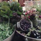 gardenharvest